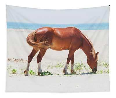 Horse On Beach Tapestry