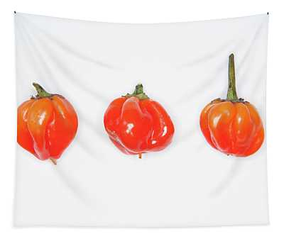 Hot Red Chillies Tapestry