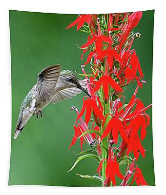 Hummer On Cardinal Flower Tapestry