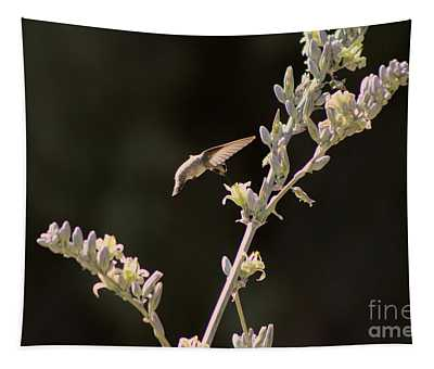 Hummingbird Drinking From Hesperaloe Parviflora Flower Tapestry