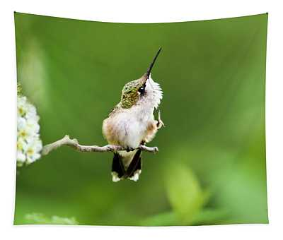 Tapestry featuring the photograph Hummingbird Flexibility by Christina Rollo