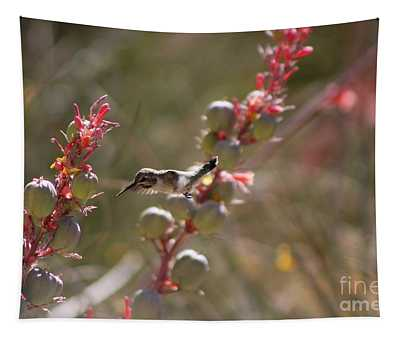 Hummingbird Flying To Red Yucca 1 In 3 Tapestry