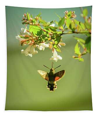 Hummingbird Hawk-moth Tapestry