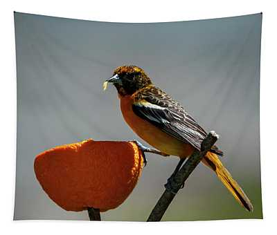 Hungry Oriole Tapestry