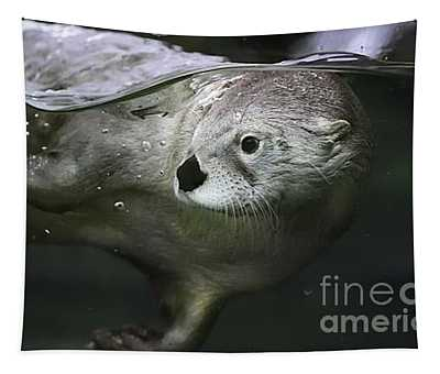 I Otter Be Swimming Tapestry