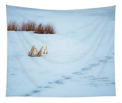 Ice Patterns Tapestry