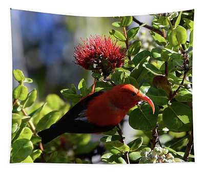 I'iwi The Honeycreeper Tapestry