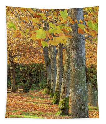 In A Row Tapestry