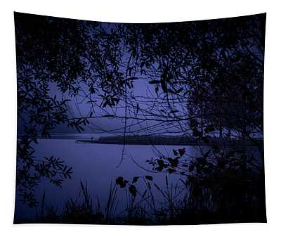 In The Darkness Tapestry
