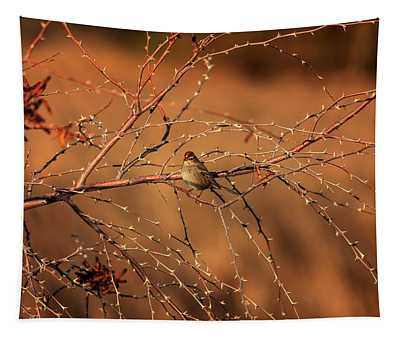 Inhospitable Tapestry