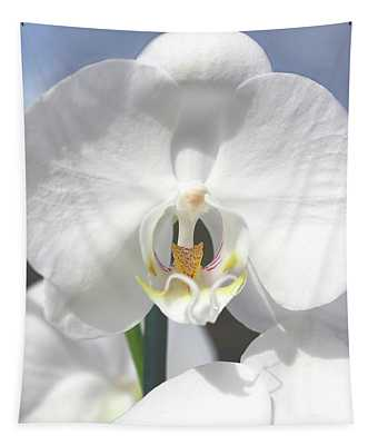 Inside The White Orchid Tapestry