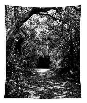 Into The Darkness Tapestry