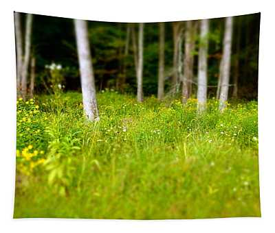 Into The Wild Tapestry