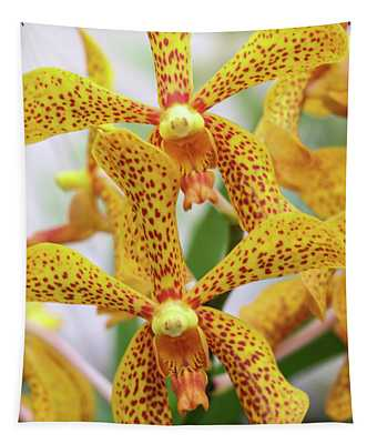 Intriguing Yellow Spider Orchids Tapestry