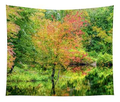 Ipswich River Reflections, Topsfield Ma.  Tapestry