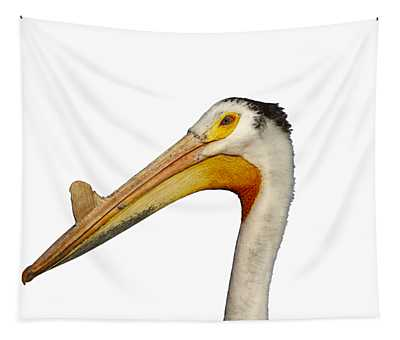 Isolated White Pelican 2014-1 Tapestry