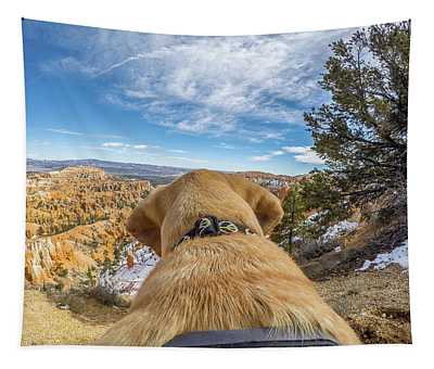 Jackson At Bryson Canyon Tapestry