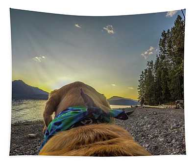 Jackson Lake Sunset By Photo Dog Jackson Tapestry