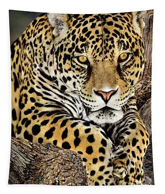 Jaguar Portrait Wildlife Rescue Tapestry