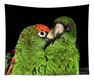 Jardine's Parrots Tapestry