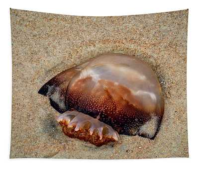 Jellyfish On The Beach Tapestry