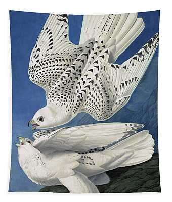 Jer Or Iceland Falcon, Falco Islandicus By Audubon Tapestry