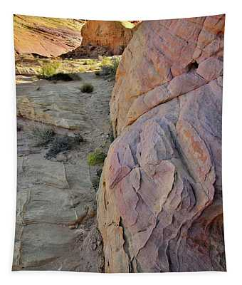 Kaleidoscope Of Color In Valley Of Fire Tapestry