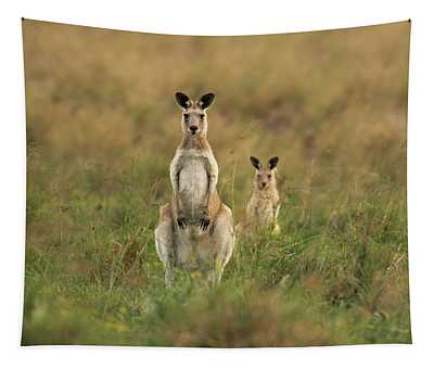 Kangaroos In The Countryside Tapestry