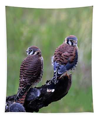 Kestrel Pair Tapestry