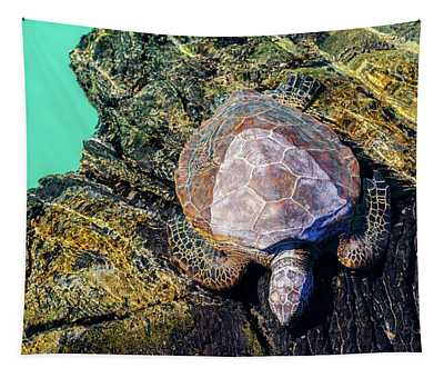 Kiholo Bay Sleeping Honu Tapestry