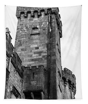 Kilkenny Castle Black And White Tapestry