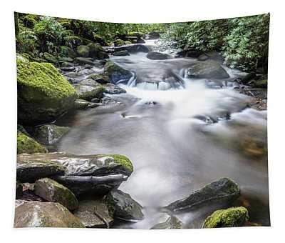 Killarney National Park Torc Waterfall Long Exposure  Tapestry