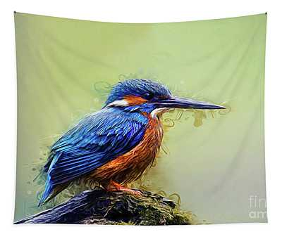 Designs Similar to Kingfisher by Ian Mitchell