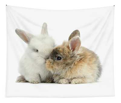 Kissing Love Bunnies Tapestry