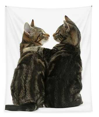 Kitty Lovers Tapestry