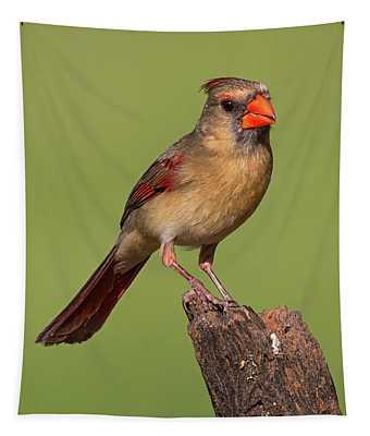Lady Cardinal Tapestry
