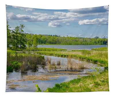 Lake Itasca Beauty Tapestry