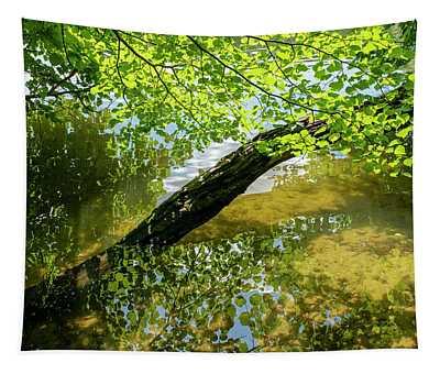 Lake Near Sweita Lipka, Northern Poland Tapestry