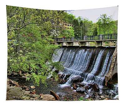 Lake Susan Overflow At Montreat Tapestry