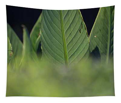 Large Dark Green Leaves Tapestry