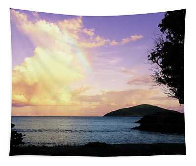 Last Rainbow Of The Day Tapestry