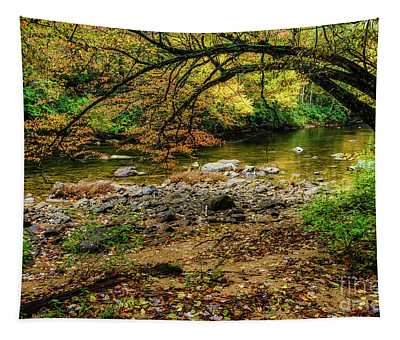 Late October On Cranberry River Tapestry