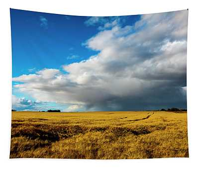 Late Summer Storm With Tornado Tapestry