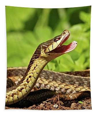 Laughing Snake Tapestry