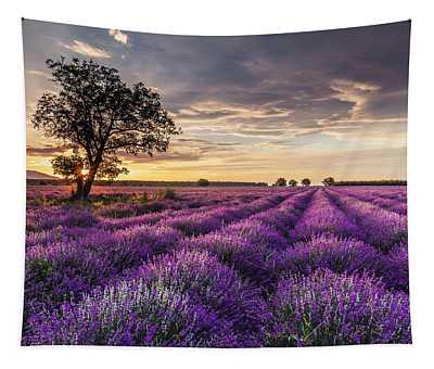 Lavender Sunrise Tapestry