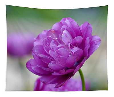 Lavender Tulip Tapestry