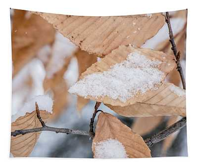 Leaves In Winter  Tapestry