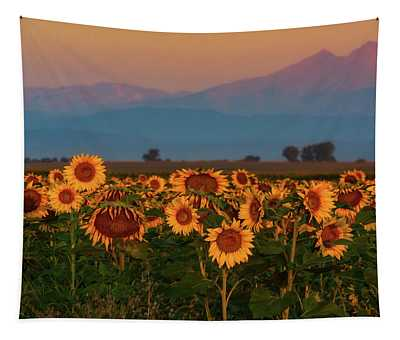 Tapestry featuring the photograph Light Of The Sunflowers by John De Bord