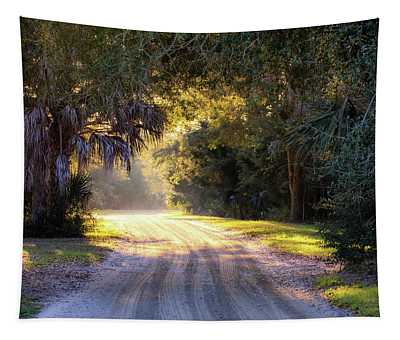 Light, Shadows And An Old Dirt Road Tapestry
