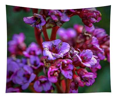 Lilac #h9 Tapestry